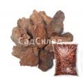 Кора сосны 6-10 см крупная 60 л